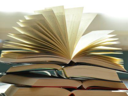 Książka przychodów i rozchodów - zalety i wady